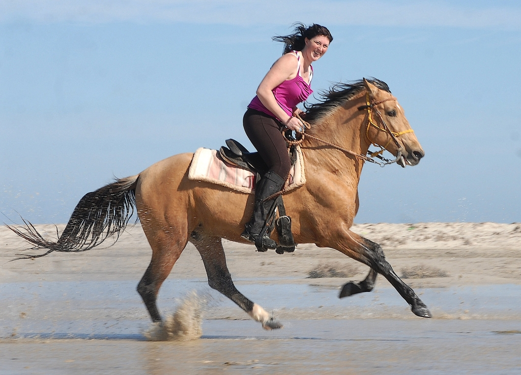 free gallop on the beach