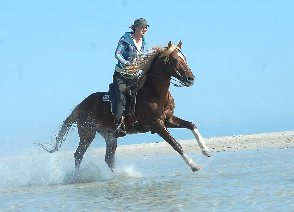 Gallop in seawater