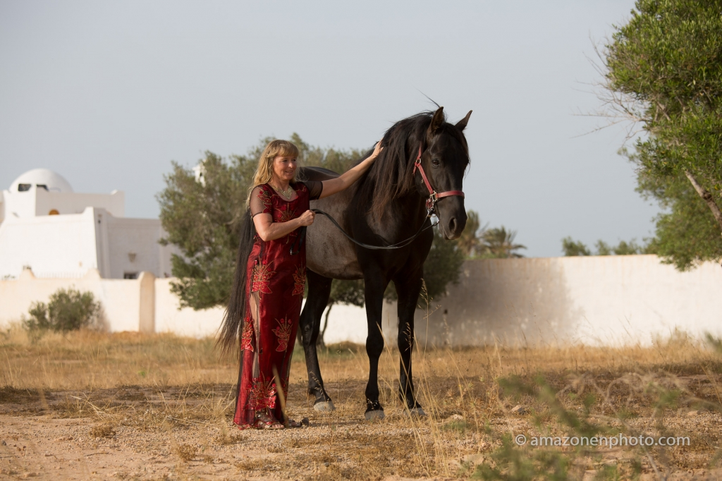 Guest in Horse riding holidays