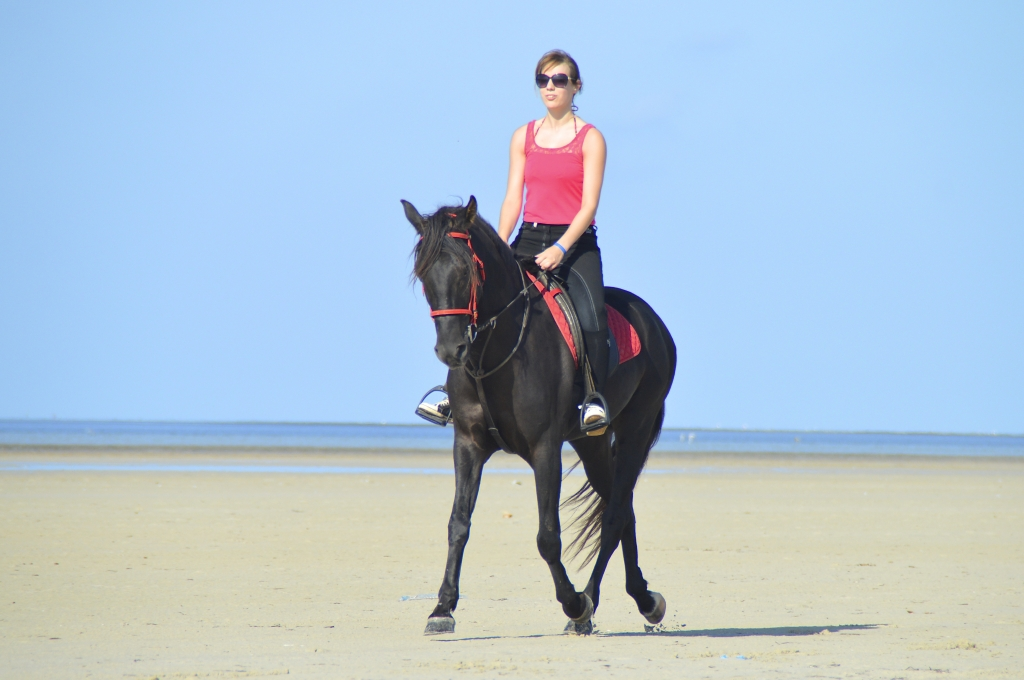 Horseback riding on fine sand beach