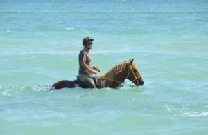horse riding in seawater
