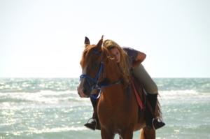 Horseback holidays picture