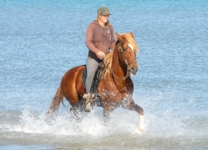 Horseback riding in water