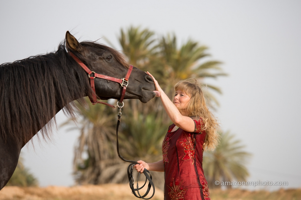 Interacting with horses