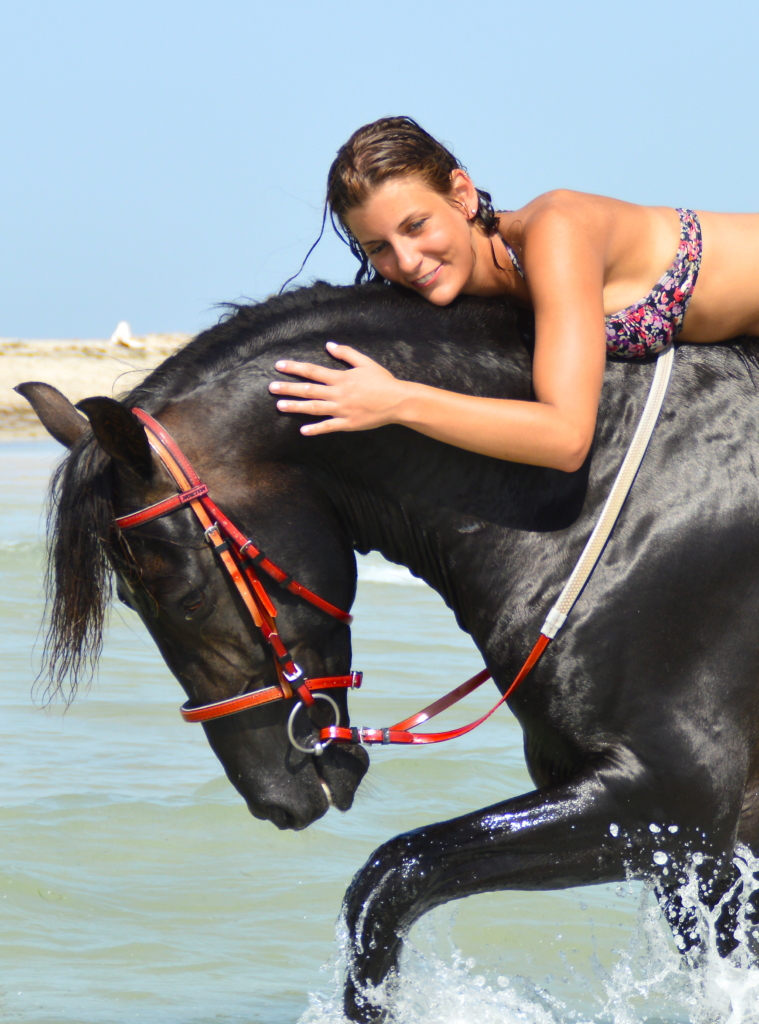Horse riding in Djerba island