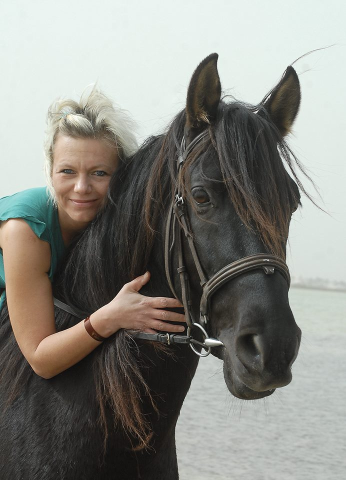 Photo shooting with horses