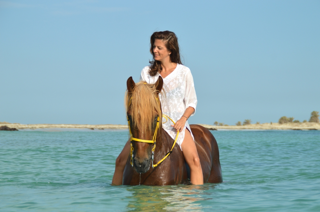 Swim with horses in Tunisia