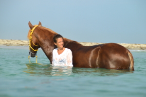 Swimming with horse picture