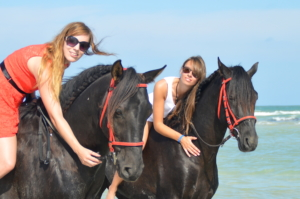Horse riding Holidays