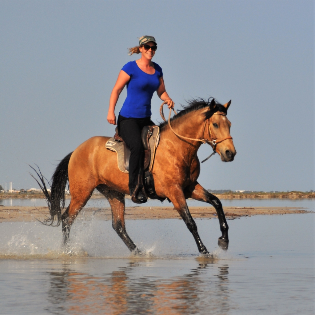 canter on the beach bitless