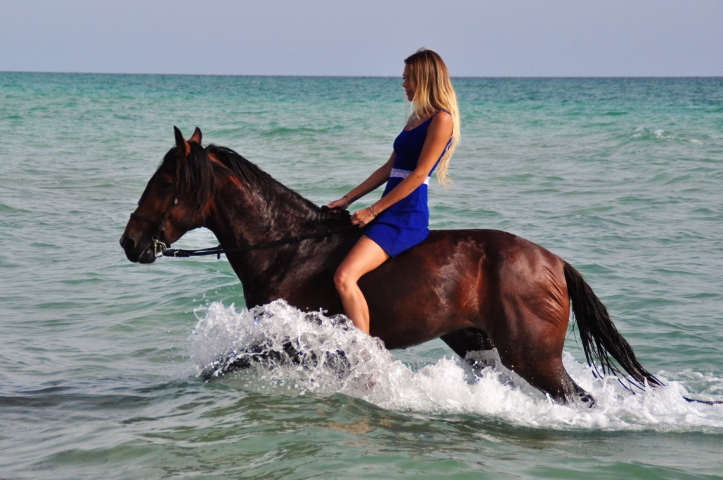 trotting through the sea with horse
