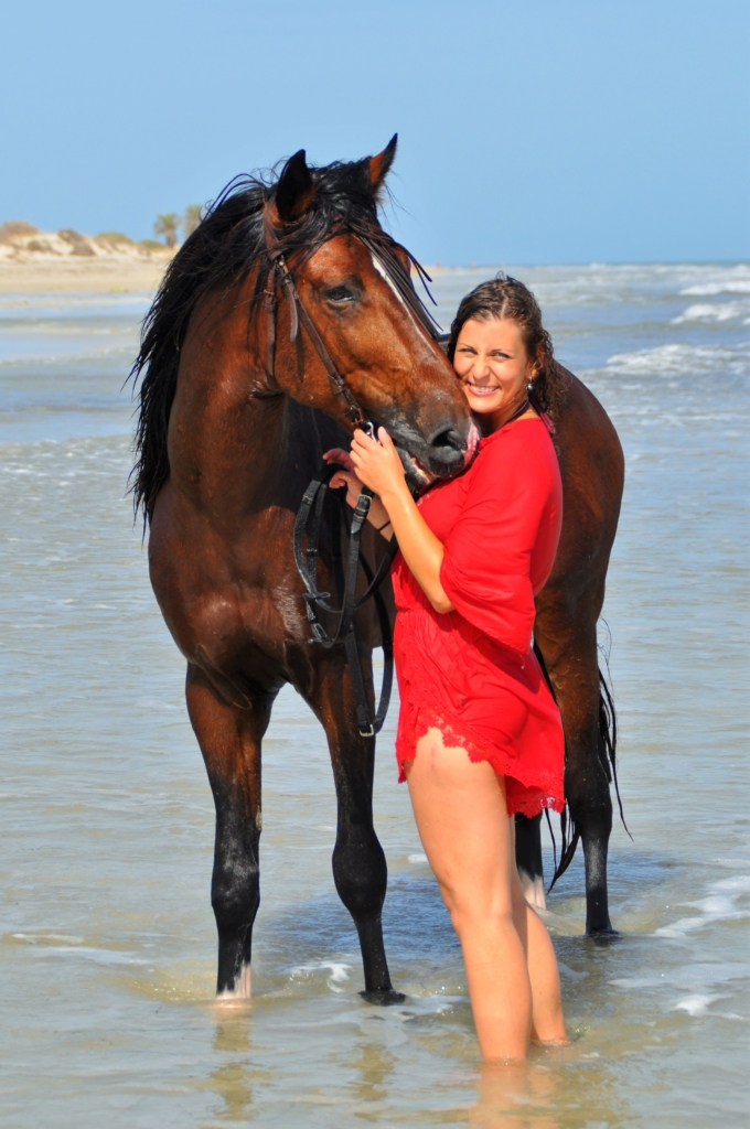 Swimming with horse sea